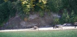 Outcrop at Dabob Bay, Courtesy of Trevor Contreras.