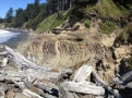 Angular unconformity in the rocks at Beach 4 in the Olympic National Park, Jefferson County, WA. Courtesy of Dave Norman, DNR.