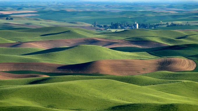 6_agriculture_Palouse_hills_northeast_of_Walla_Walla